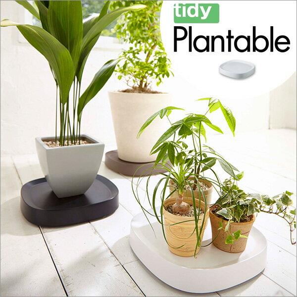 tidy可移動盆栽托盤x1 0