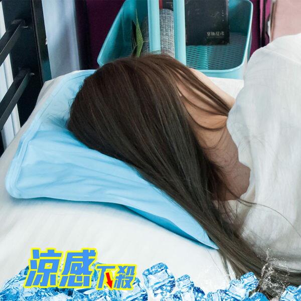 買一送一《共2入》冰涼墊 冷凝墊 涼夏枕 重量級萬用冷凝坐墊 寵物散熱墊 寵物床 枕頭墊 涼感 COOL【D002-2】 - 限時優惠好康折扣