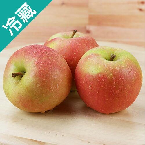 ~ ~蜜桃 TOKI 蘋果 46   3 粒~愛買冷藏~