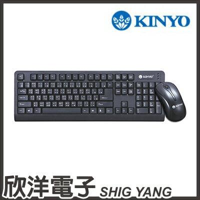 ※ 欣洋電子 ※ KINYO 低噪音標準PS2鍵盤+USB滑鼠組 (KBM-360)
