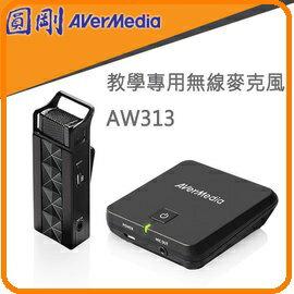 圓剛 AW313 2.4GHz教學用無線穿戴式麥克風 領夾式行動教學機