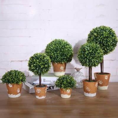 ~模擬草球含盆盆景~5號~寬16~高33cm~1盆  組~長青樹橄欖樹家居飾品客廳陽臺裝飾