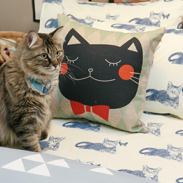 Blue cat 藍貓【床包藍貓】 加大/Kingsiz賣場   舒適磨毛布 台灣製造 6