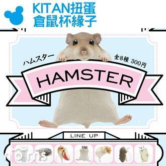 NORNS【KITAN扭蛋 倉鼠杯緣子】日本奇譚俱樂部 PUTITTO玩具 公仔 HAMSTER 黃金鼠 老鼠