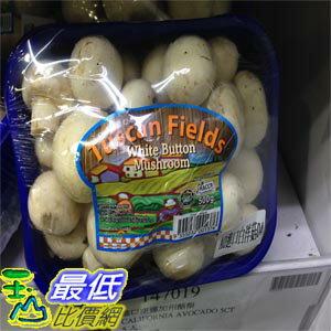 [需低溫冷藏] COSCO 進口白洋菇 WHITE BUTTON MUSHROOM 每盒500公克 _C69480
