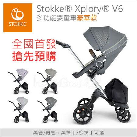 ✿蟲寶寶✿【挪威Stokke】獨家搶先預購!時尚全能嬰兒手推車XploryV6豪華款-春芽綠座椅